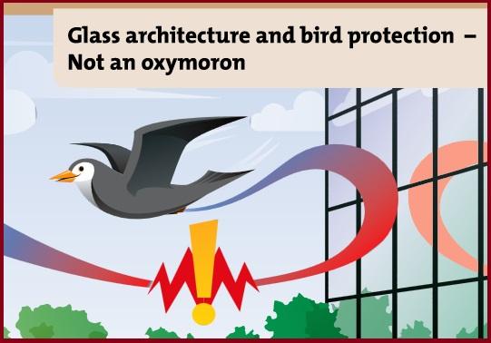 Glass_architechture_bird2