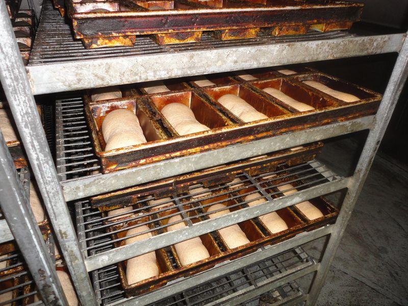 Leavening bread